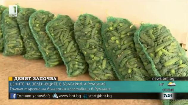 Голямо търсене на български краставици в Румъния