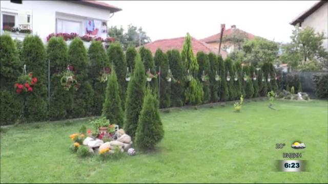 Най-красив двор в село Жабокрът