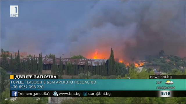 След огнения ад в Гърция: няма опасност за живота на пострадалата българка