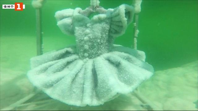 Солените скулптури на Сигалит Ландау