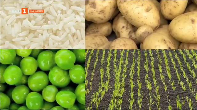 Нов документален филм разбира митовете за ГМО