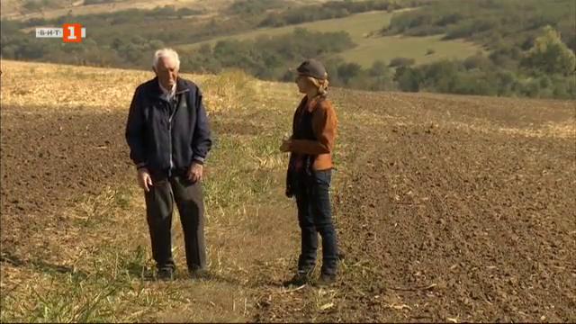 Плодородните ниви край Кнежа и една просперираща земеделска кооперация