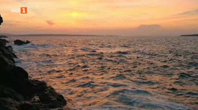 Разказ за красотата на морето и смелостта