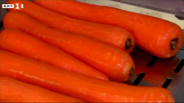 Морковите като строителен материал