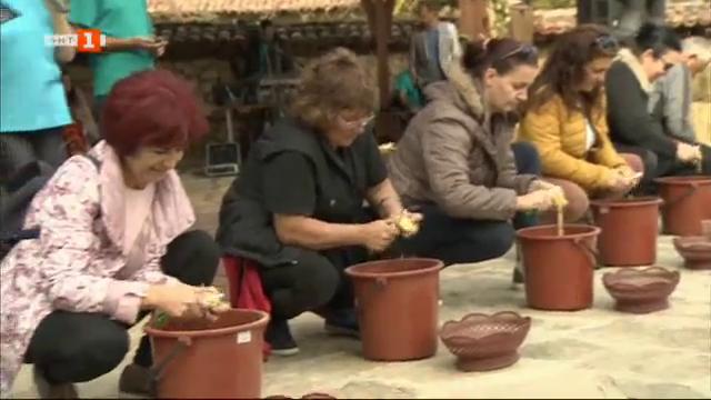 Първи празник на картофа в Копривщица