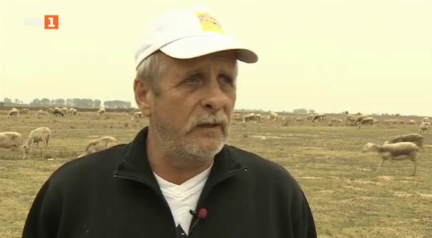 Защо строителен предприемач си построи ферма и мандра в село Строево