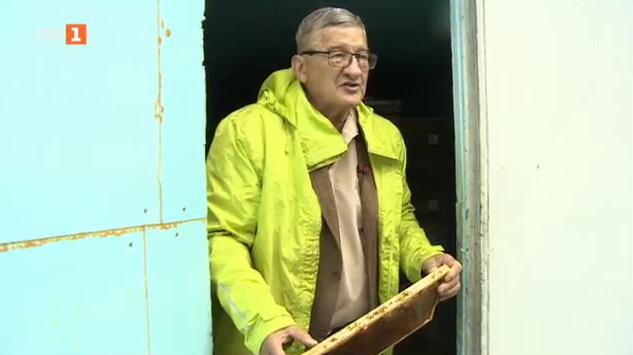 Как унгарските пчелари отстояват мястото си на пазара в страната и Европа