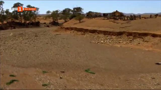 Световен ден на почвите