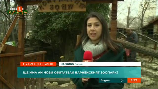 Как изпрати старата и посрещна новата година зоопаркът във Варна