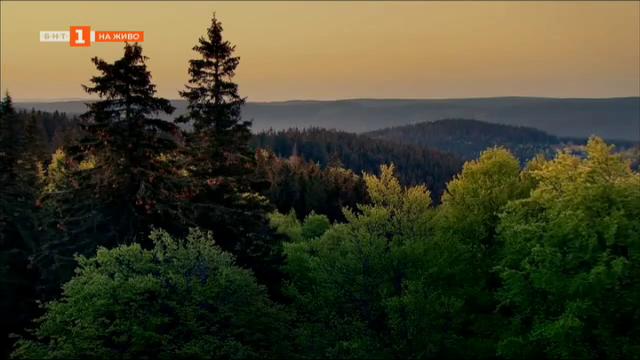 Портал за туризъм в Северозападна България