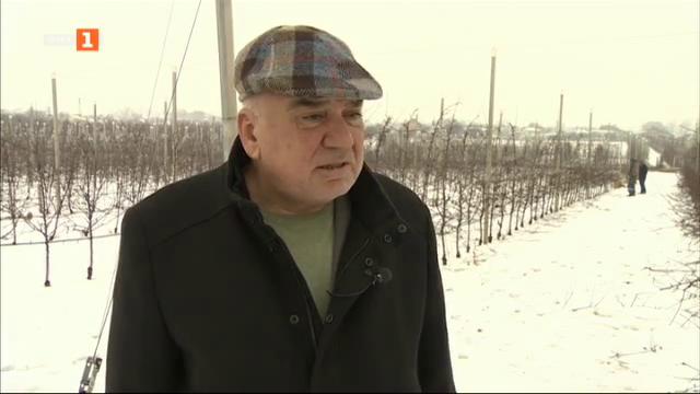 Овощните градини на Георги Разсипийски