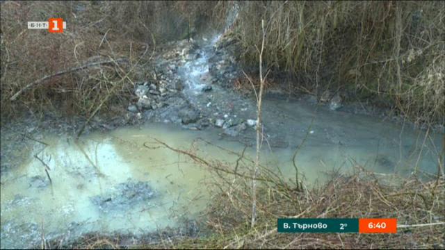 Замърсяване на река Дунав с хлебна мая
