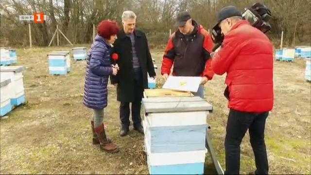 Пчелинът на семейство Петкови от село Московец