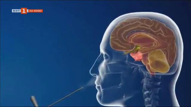 Световeн ден на мозъка
