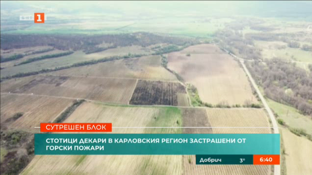 Стотици декари в Карловския регион застрашени от горски пожари