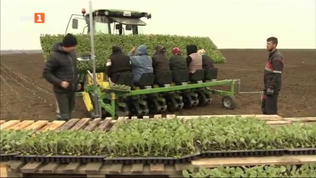 Фермерските сдружения – възможни и у нас
