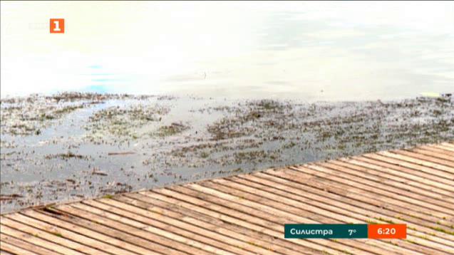 Жители на кв. Панчарево почистиха езерото и околностите му