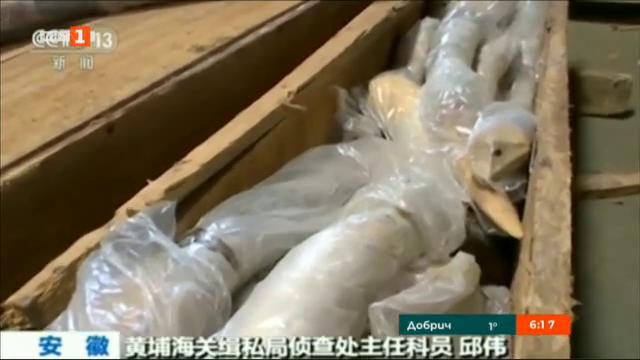 В Китай заловиха рекордно количество контрабандна слонова кост