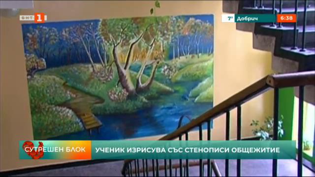 Ученик от Русе изрисува общежитие със стенописи