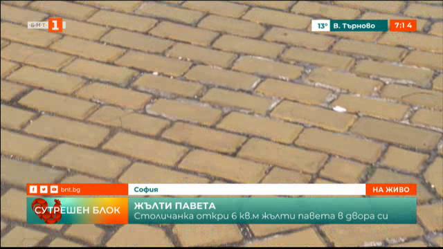 Столичанка откри 6 кв. м жълти павета в двора си