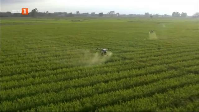 За или против пестицидите