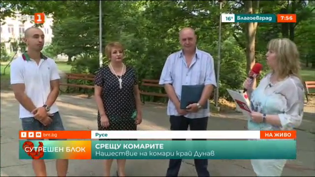 Нашествие на комари край Дунав. Кога започва пръскането от въздуха?