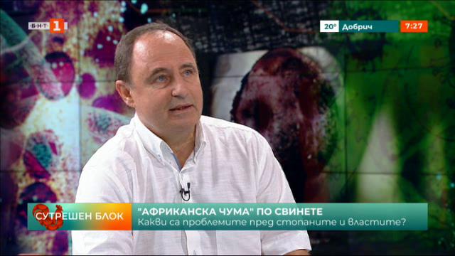 Заместник-министър Янко Иванов: 5 села са засегнати от африканската чума