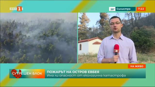Има ли опасност от екологична катастрофа заради пожарите на о. Евбея?