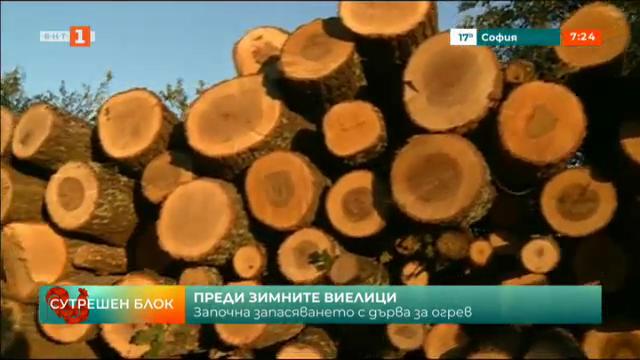 Започна запасяването за дърва за огрев
