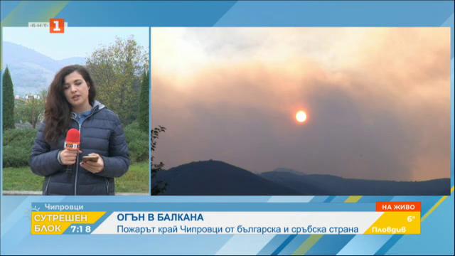 Продължава борбата с пожара край Чипровци