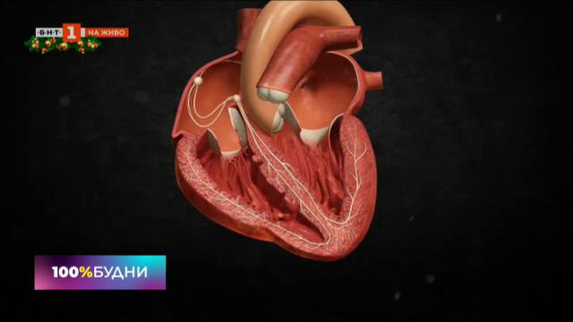 Синдромът на празничното сърце или как да празнуваме здрави