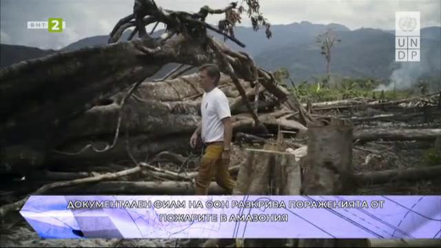 Документален филм на ООН разкрива пораженията от пожарите в Амазония
