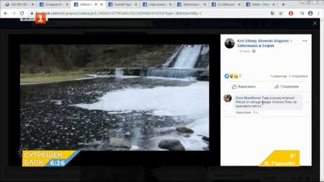 Клипове от социалните мрежи, които привлякоха вниманието