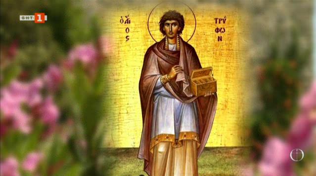 Мъченикът-лечител, когото превърнаха в патрон на лозари и винари