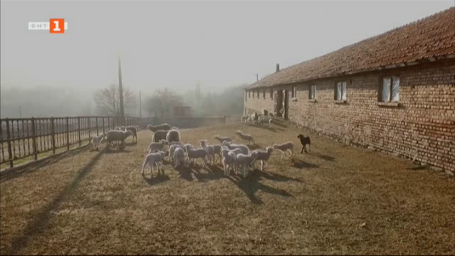 Вълнуваща история за истински български фермери