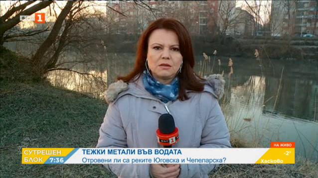 Отклонение за тежки метали след замърсяването на реките Юговска и Чепеларска