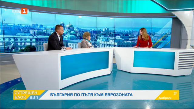 България по пътя към еврозоната - анализ на проф. Христина Вучева и Петър Ганев