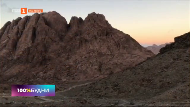 Вълшебният керван и приключенията му на Синайския полуостров