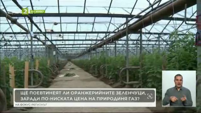 17–годишният Иван Иванов от Сандански сам се грижи за овощната си градина