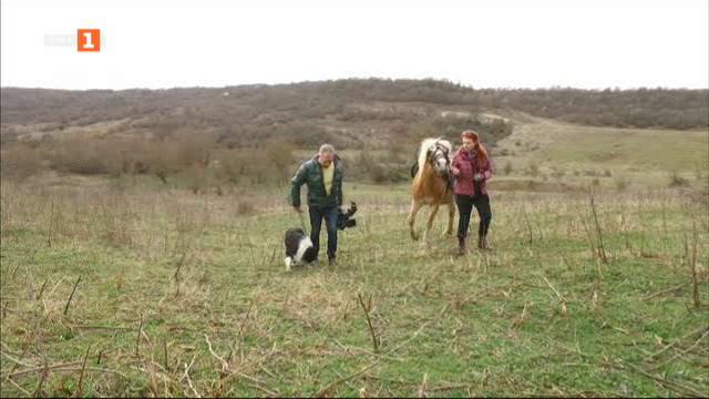 На лов в Габровския Балкан