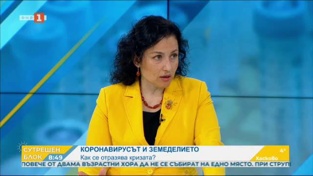 Десислава Танева: Не може тази криза да е печалба за едни, а оцеляване за други