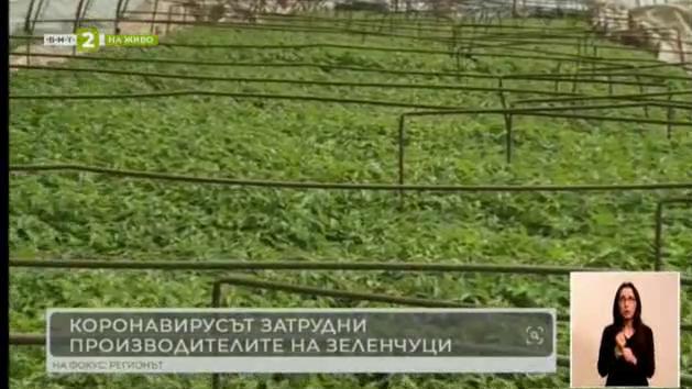 Защо извънредното положение причини проблеми на зеленчукопроизводителите?