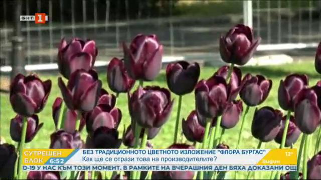 Без традиционното цветно изложение Флора Бургас