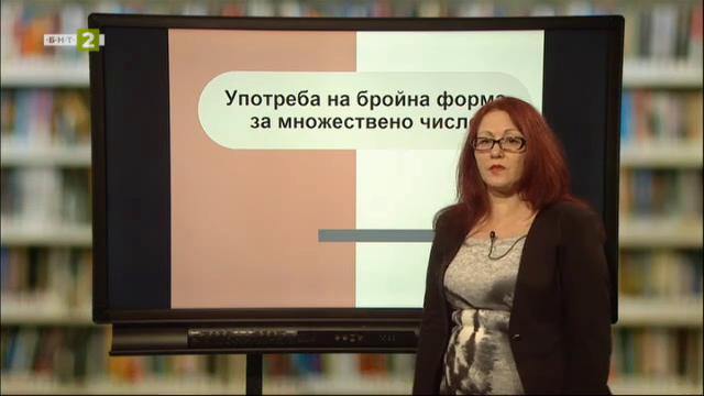 Матурата на фокус: Тема - Употреба на бройна форма; Тема - Димчо Дебелянов