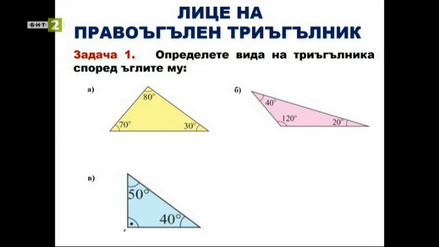 Математика 5.клас: Лице на правоъгълен триъгълник