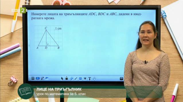 Математика 5. клас: Лице на триъгълник