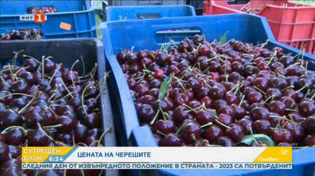 Отпускат се 1 милион лева за реализацията на български череши