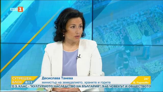 Десислава Танева: Няма квоти за храните във веригите
