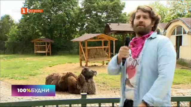 Софийският зоопарк отвори врати след два месеца пауза