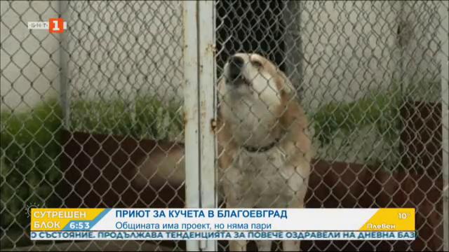 Приют за кучета в Благоевград